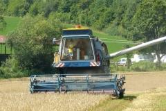 traktory (6)
