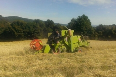 traktory (7)