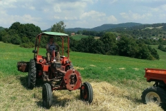 traktory (9)