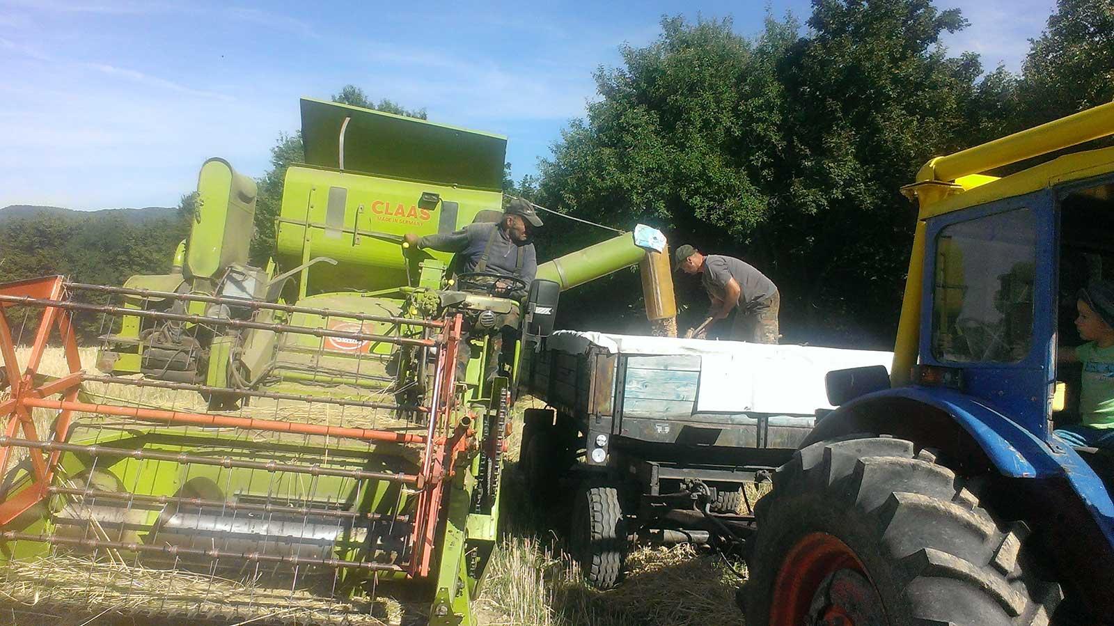 traktory (8)